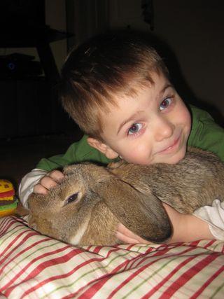 Floppy Bunny Love (24)