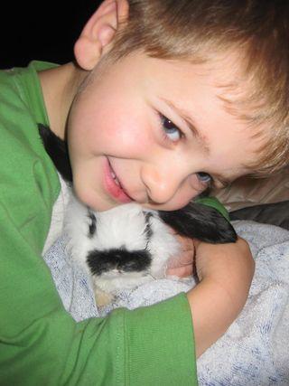 Baby Bunny 023